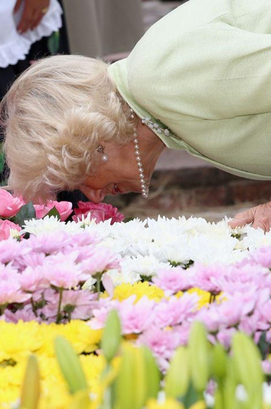 Aucun parfum de fleur n'échappera à Camilla Parker-Bowles à Bogota, le 30 octobre 2014