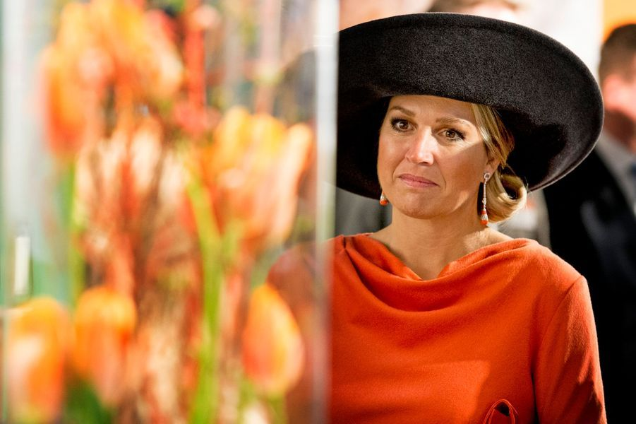 Maxima et Willem-Alexander au Veenkoloniaal museum à Veendam, le 17 février 2015