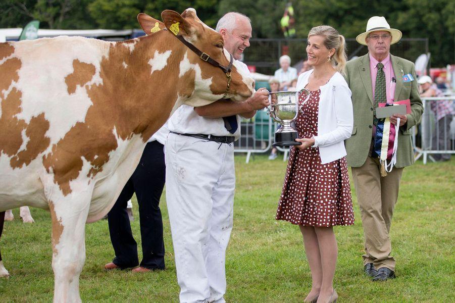 Vaches, veaux, moutons, oies… La comtesse Sophie de Wessex s'est offert une pause agricole à Brockenhurst dans le Hampshire ce mardi 26 juillet.
