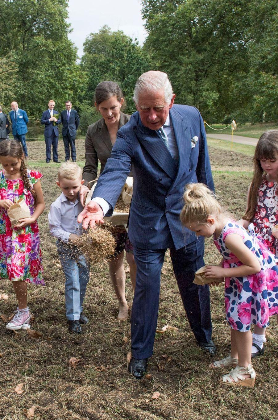 Ce mardi 6 septembre, avant d'aller fêter les 500 ans de la Poste royale avec son épouse Camilla, le prince Charles semait des fleurs des champs.