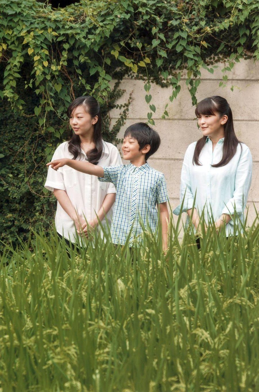 Le prince Hisahito du Japon a fêté ce mardi 6 septembre ses 10 ans, en plein débat sur les règles de succession après l'annonce de la possible abdication de l'empereur Akihito.