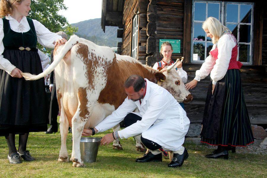 En compagnie de la princesse Mette-Marit, le prince Haakon de Norvège n'a pas hésité, ce vendredi 9 septembre, à traire une vache au Dyrsku'n, la plus grande foire commerciale et agricole du pays.