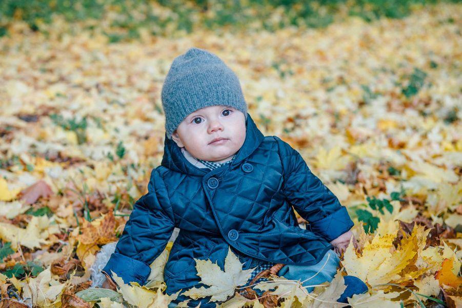 Comme elle l'avait fait en 2012 avec la princesse Estelle, la princesse Victoria de Suède a dévoilé en ce début novembre une photo de son fils le prince Oscar assis dans les feuilles mortes.