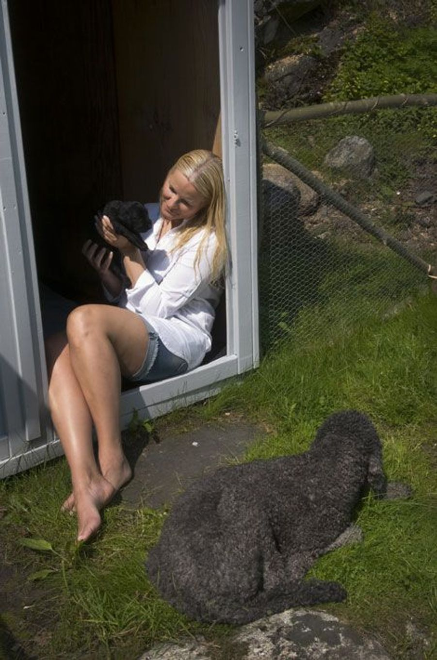 En Norvège, les chiots de Milly Kakao sont rois