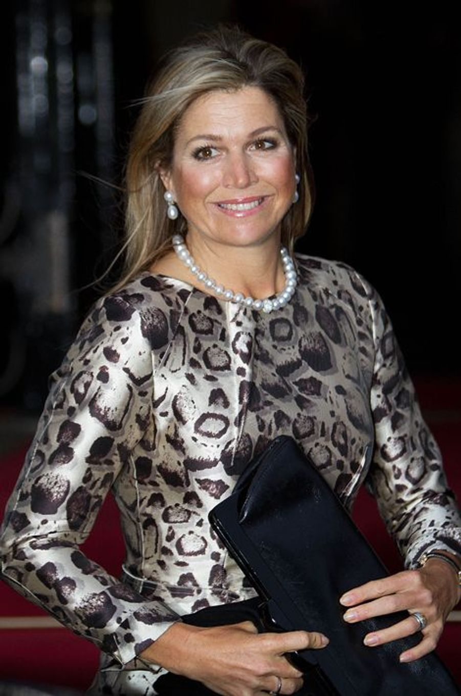 La reine Maxima des Pays-Bas, le 14 janvier 2015