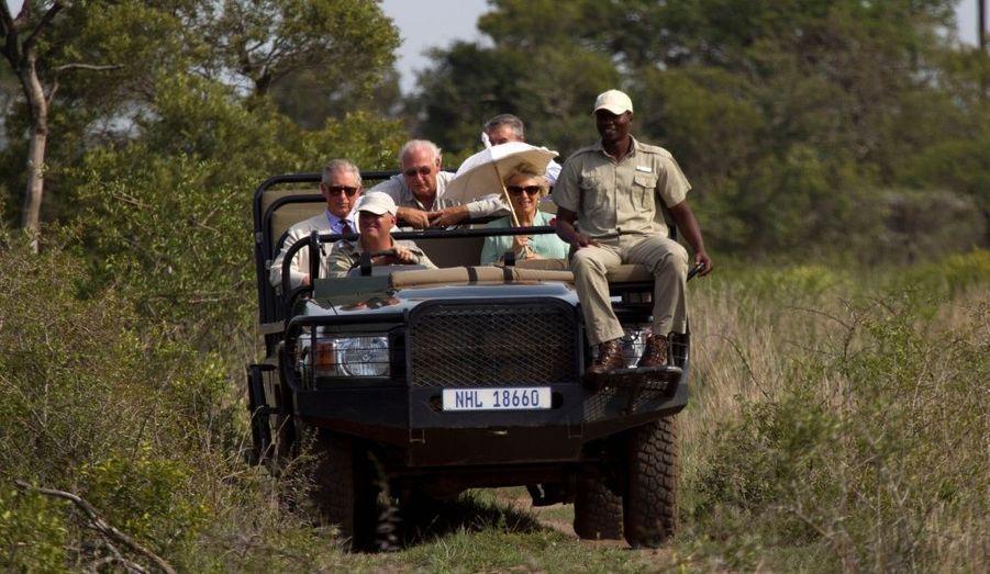 Safari écolo pour une visite de la réserve de Phinda