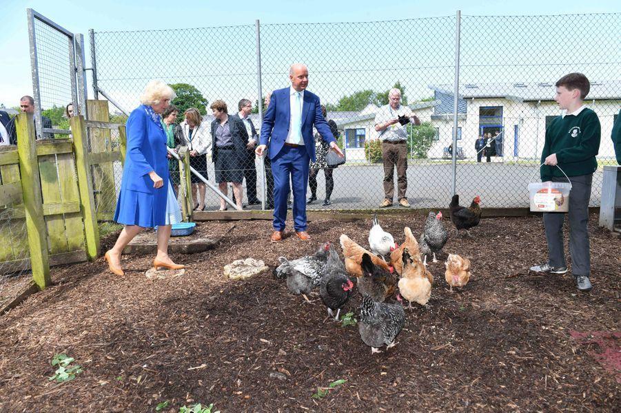 La duchesse de Cornouailles Camilla à Donegal, le 25 mai 2016