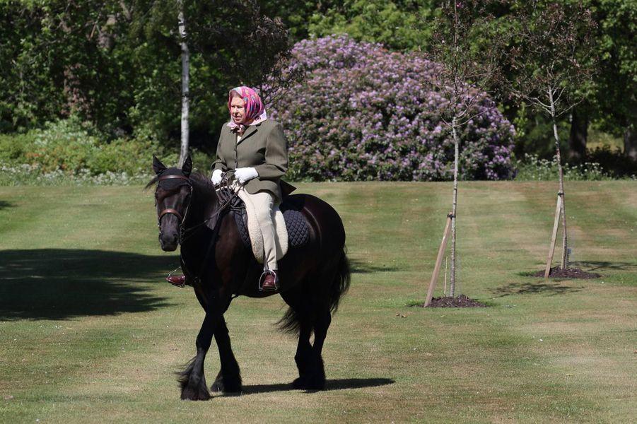 La reine Elizabeth II se promène sur le dos de son poneyBalmoral Fern au château de Windsor le 31 mai 2020