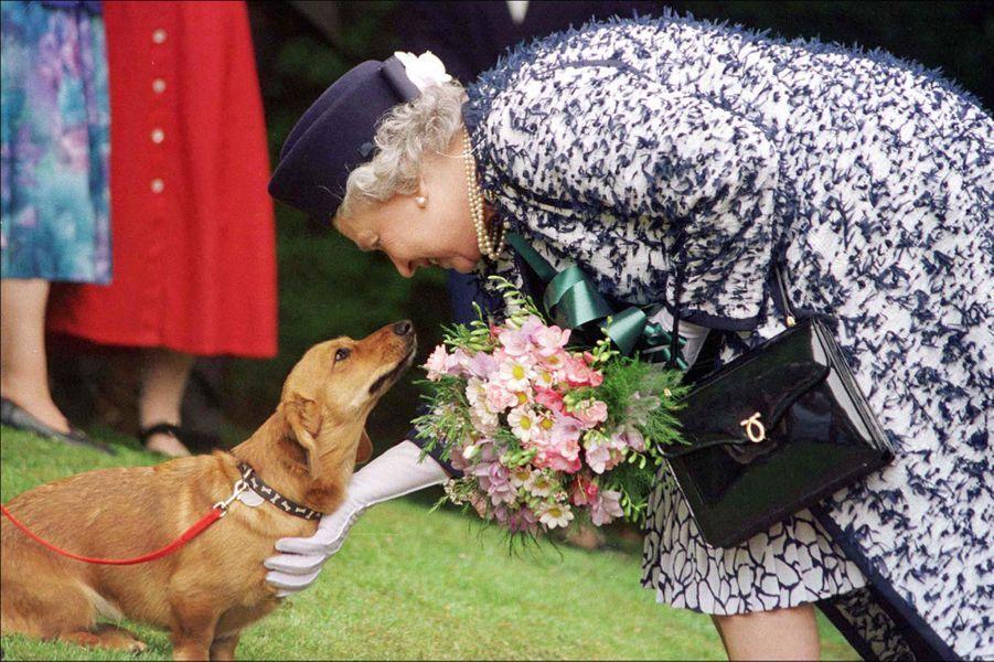 La reine Elizabeth II avec un corgi (mai 1998)