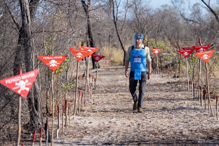 Le prince Harry marche dans les pas de Diana en Angola