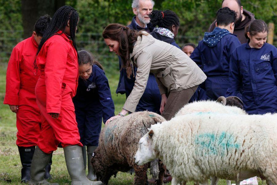 La duchesse de Cambridge, née Kate Middleton, à Arlingham, le 3 mai 2017