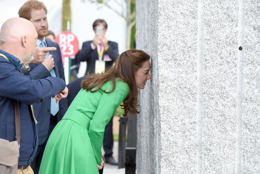 Le prince Harry et la duchesse de Cambridge au Chelsea Flower Show.