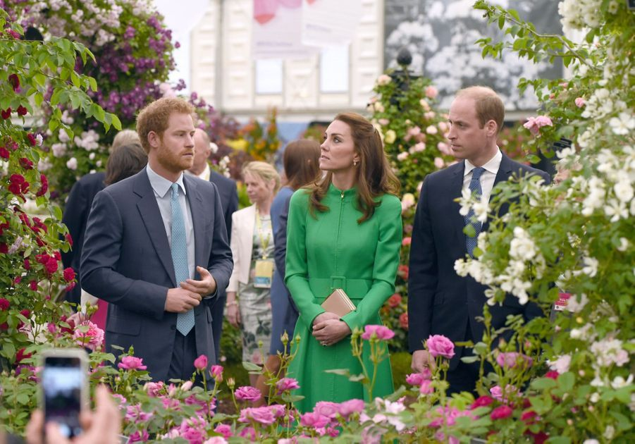 Le prince William, son épouse la duchesse de Cambridge et le prince Harry au Chelsea Flower Show.