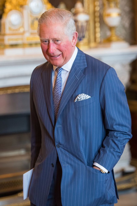 Le prince Charles de Galles à la réception tenuepour les 50 ans de son investiture au palais de Buckingham le 5 mars 2019