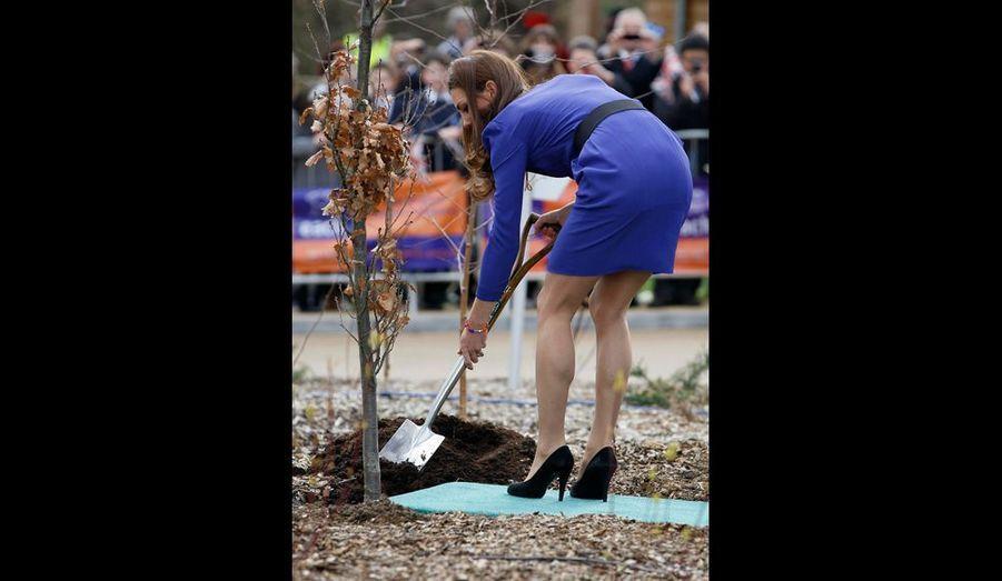 Pour l'occasion, Kate a planté un arbre, dévoilant des jambes aussi fuselées que musclées.
