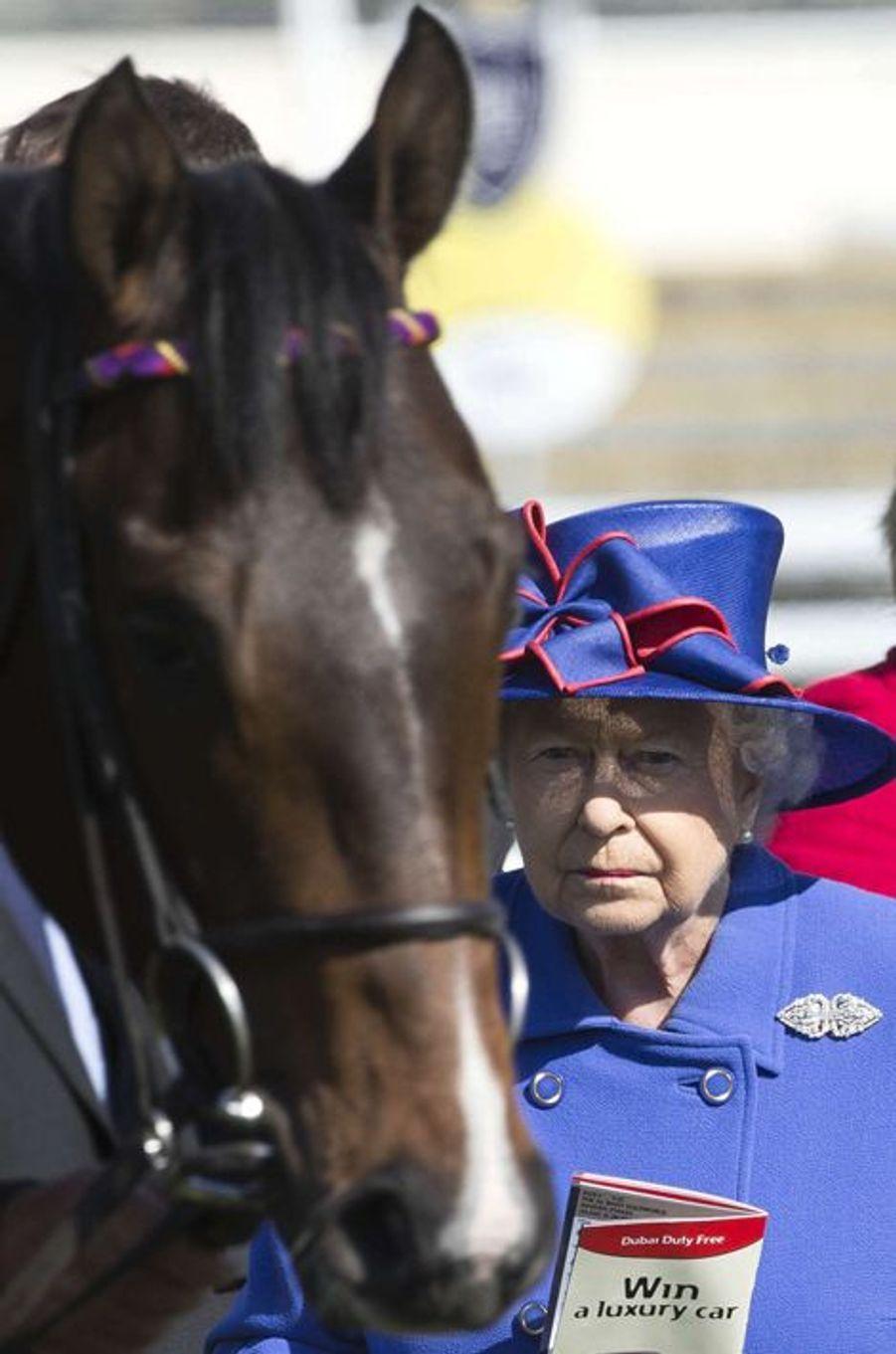 La reine Elizabeth II avec son cheval Fabricate à l'hippodrome de Newbury, le 18 avril 2015