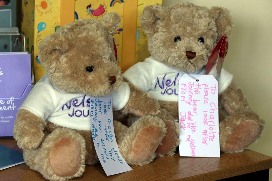 Les ours données à la reine Elizabeth II au Norfolk Hospice à Hillington, le 4 février 2016