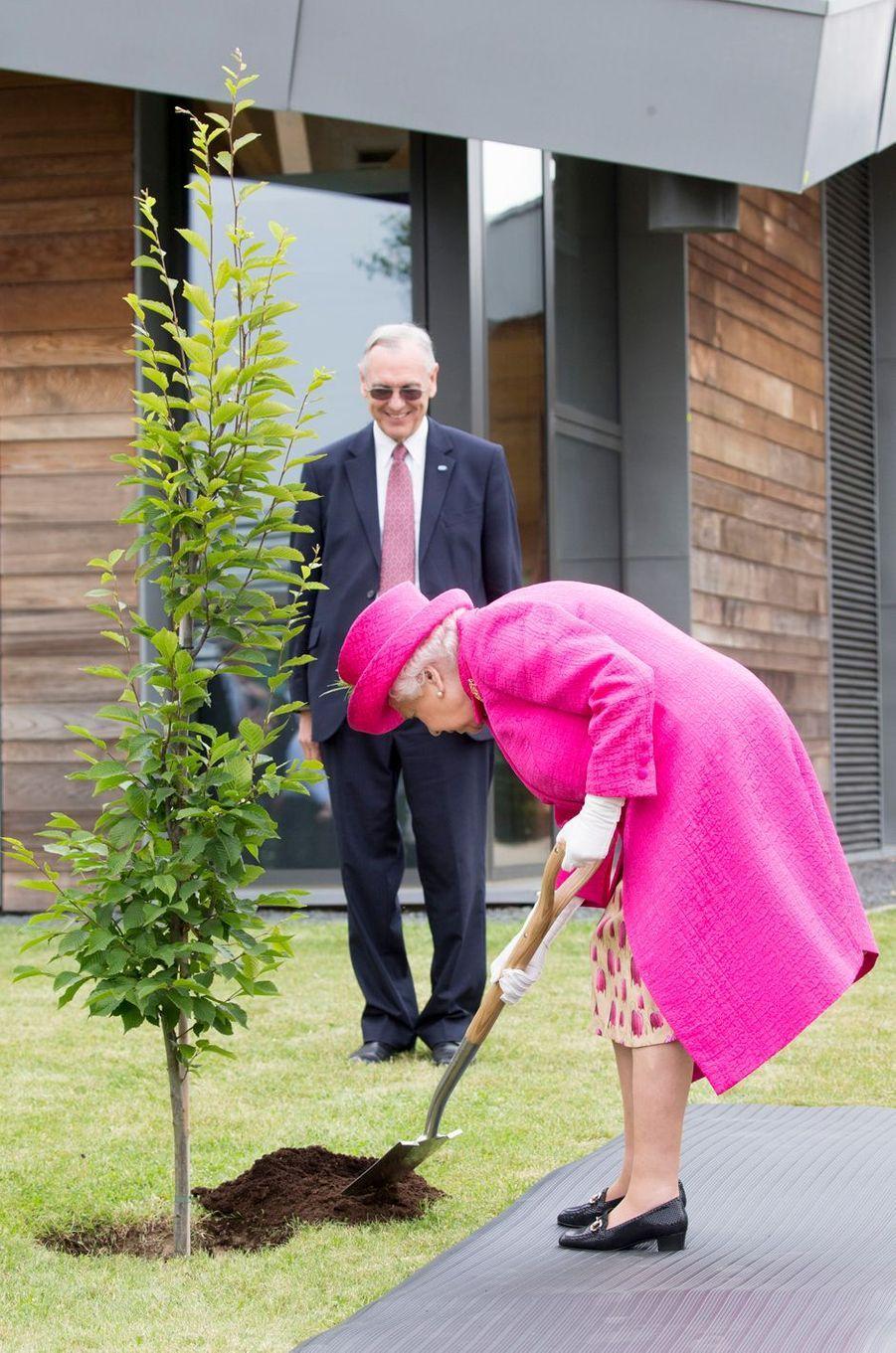 La reine Elizabeth II plante un arbre à Cambridge, le 9 juillet 2019