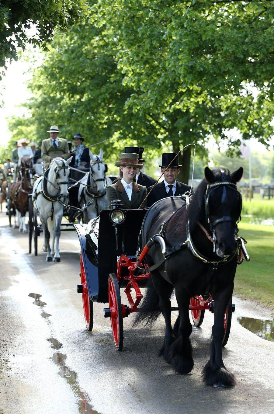 Lady Louise Windsor, petite-fille d'Elizabeth II, au Windsor Horse Show, le 14 mai 2017