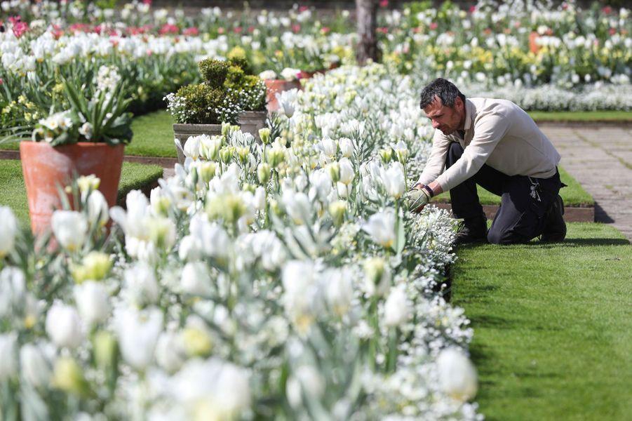 Le Jardin blanc en mémoire de Lady Di à Londres en avril 2017