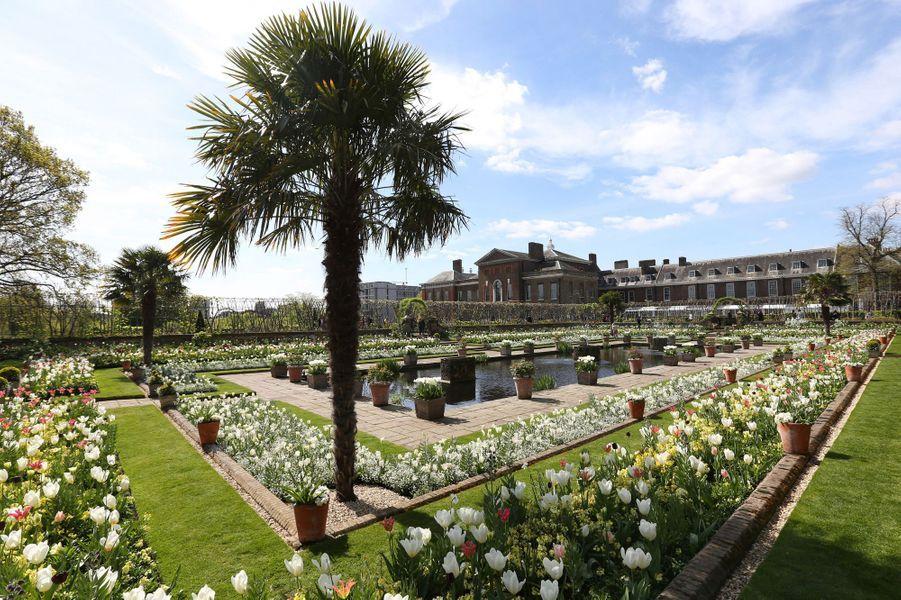 Le Jardin blanc en mémoire de Lady Diana a été créé à la place du Sunken Garden de Kensington Palace à Londres. Ici en avril 2017