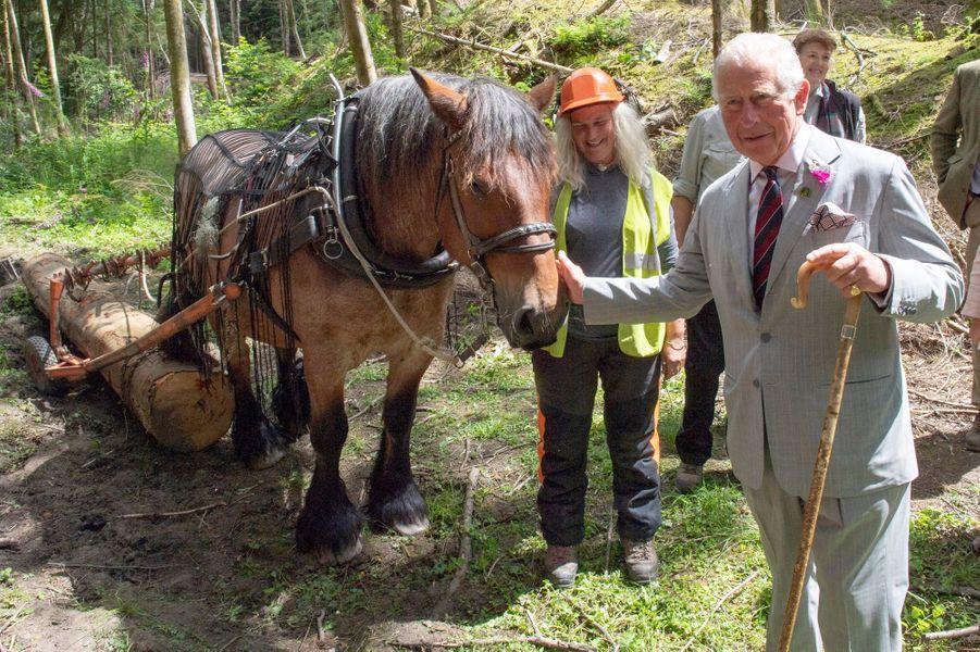 Le prince Charles à Llantrisant, le 1er juillet 2019