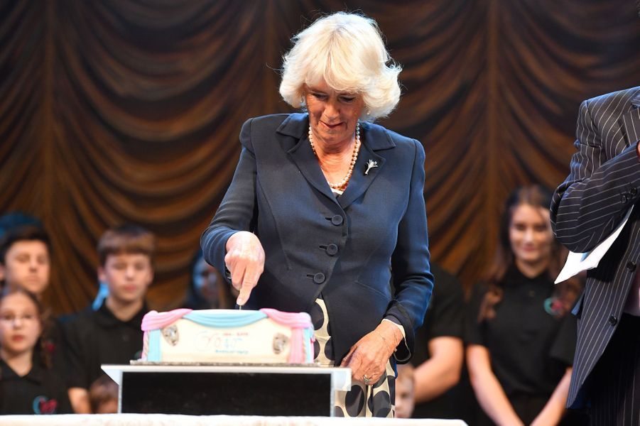 La duchesse de Cornouailles Camilla à Carmarthen, le 3 juillet 2019