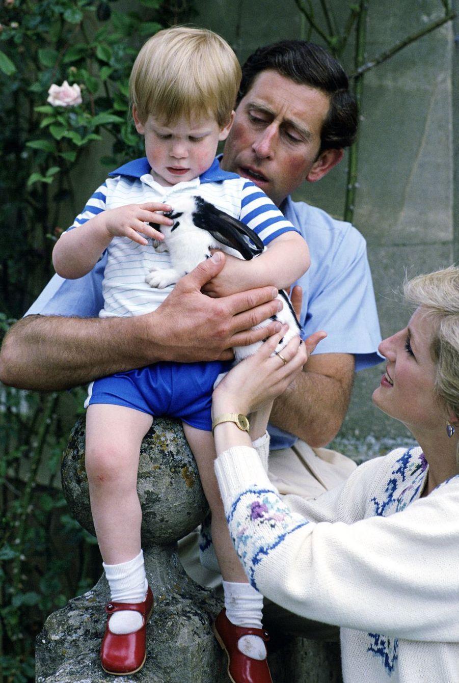 Le prince Harry jouant avec son lapin domestique dans la maison familiale deHighgrove House avec ses parents Charles et Diana en juillet 1986