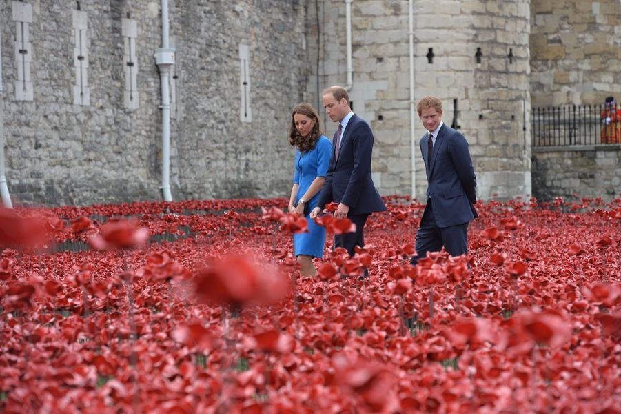 "Kate, William et Harry visitent l'installation ""Blood Swept Lands and Seas of Red"" à la Tour de Londres, commémorant le début de la Grande Guerre, le 5 août 2014."