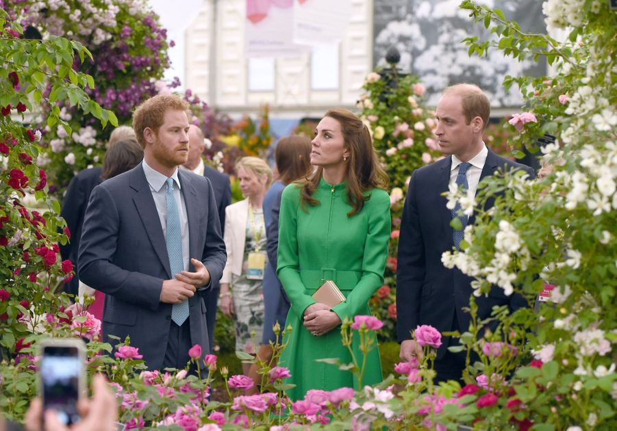 Kate, William et Harry au Chelsea Flower Show, le 23 mai 2016