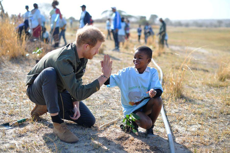 Harry aide les écoliers à planter des arbres auparc national de Chobe, au Botswana, le 26 septembre 2019