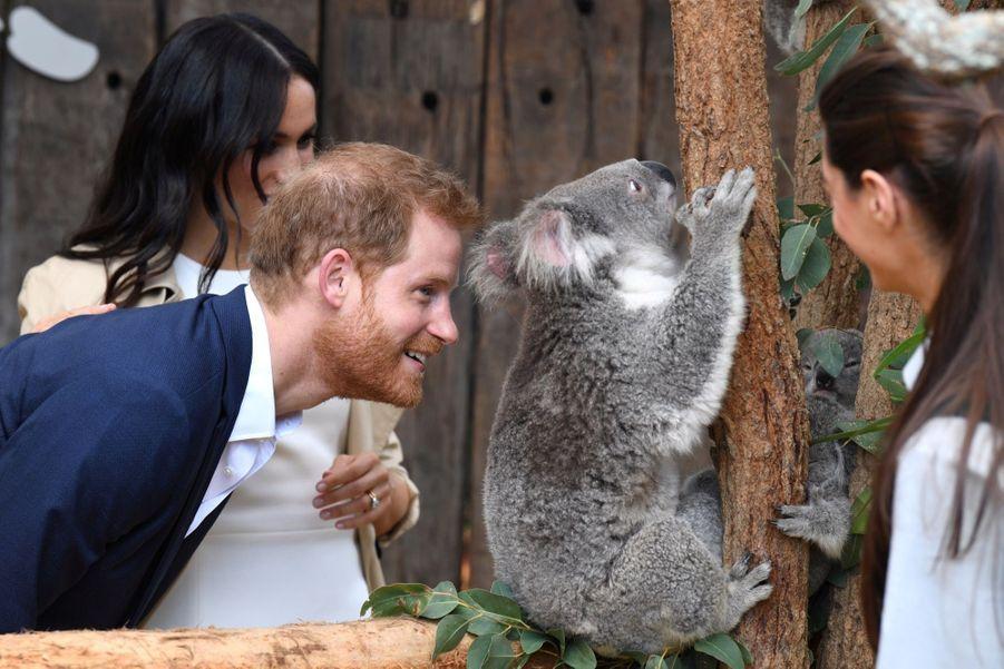 Meghan Et Harry, Première Journée En Australie ( 19