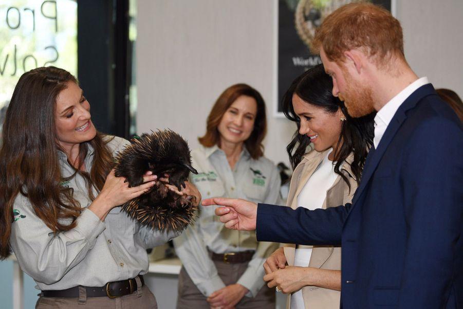 Meghan Et Harry, Première Journée En Australie ( 26