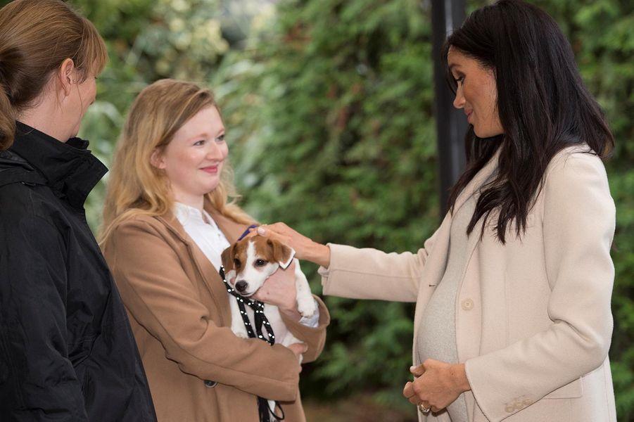 La Duchesse de Sussex a honoré son deuxième engagement de la semaine en rendant visite aux pensionnaires canins duThe Mayhew Animal Home, à Londres.