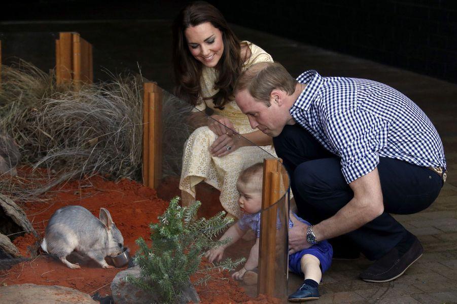Au musée de Sidney, en 2014, George découvre les animaux.