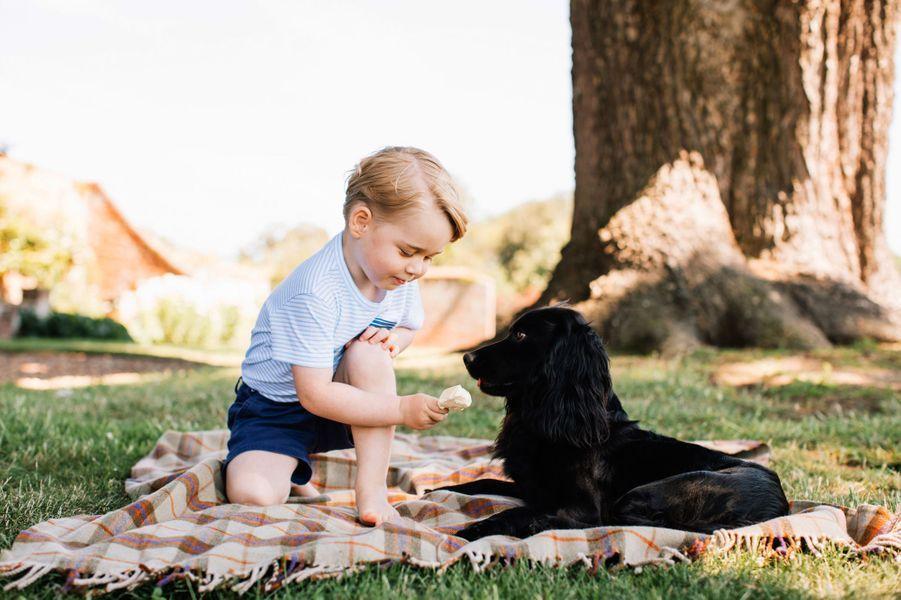 Portrait officiel de George en 2016. Il joue avec le chien Lupo.