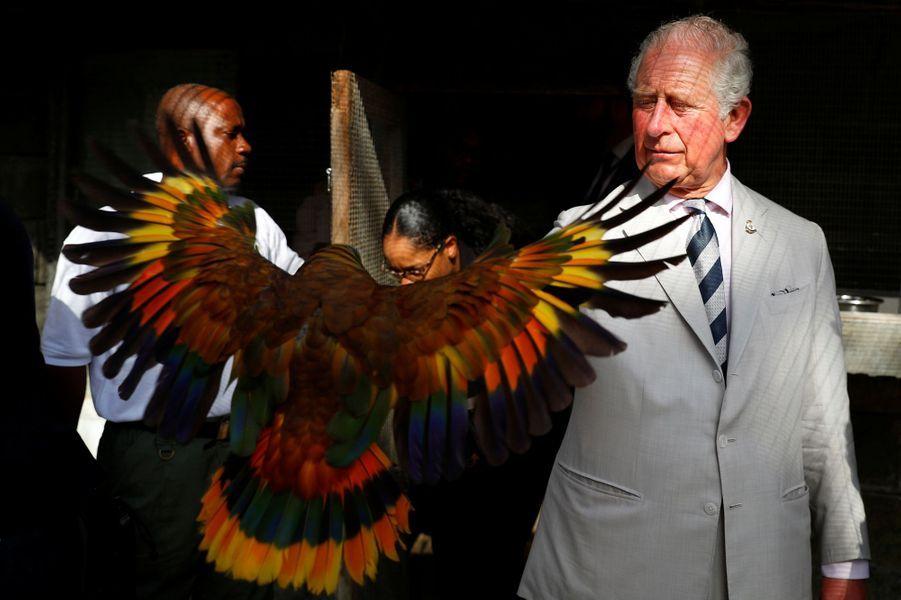 Le prince Charles à Saint-Vincent-et-les Grenadines, le 20 mars 2019
