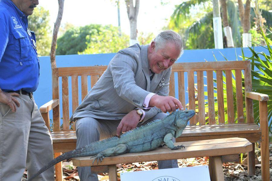 Le prince Charles aux îles Caïmans, le 28 mars 2019