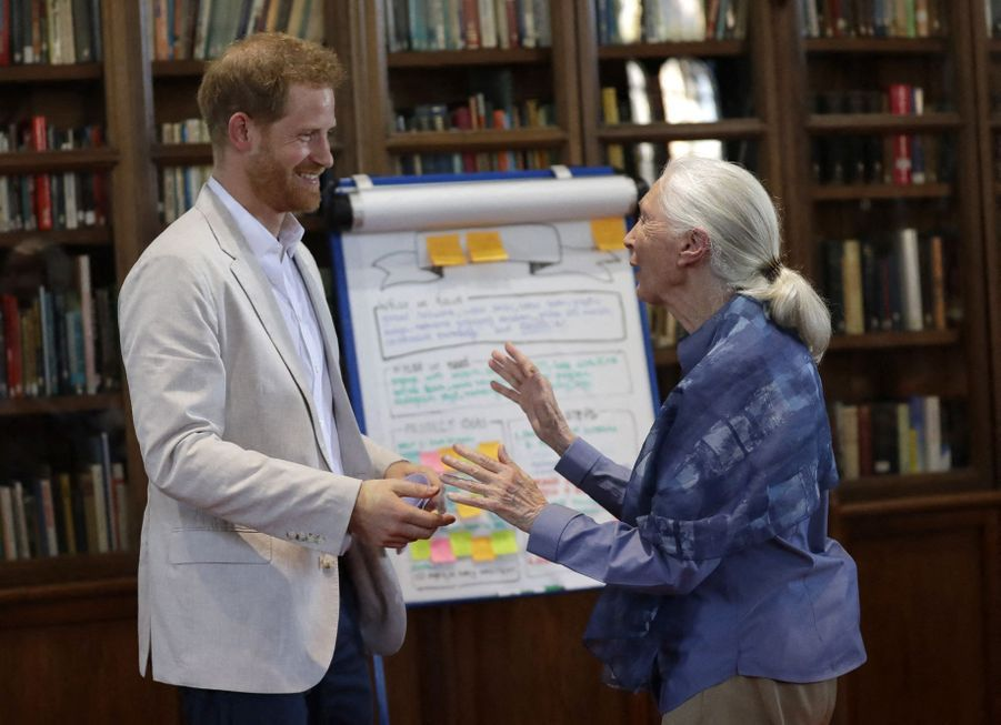 Le prince Harry a rencontré Jane Goodall, mardi 23 juillet 2019