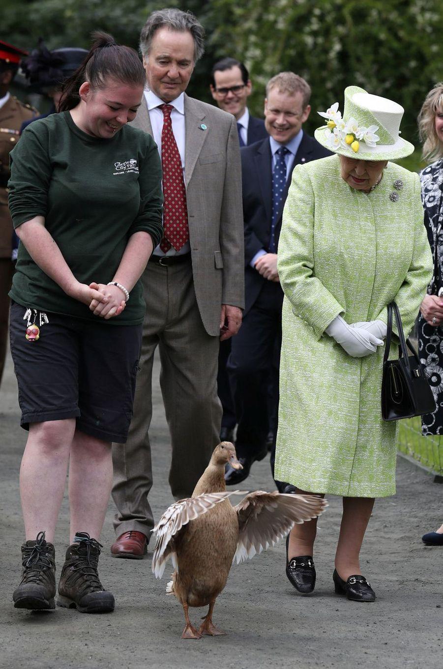 La reine Elizabeth II avec la cane Olive à Edimbourg, le 4 juillet 2019