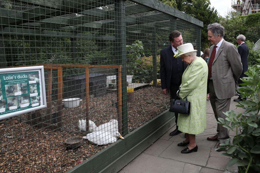 La reine Elizabeth II visite la Gorgie City Farm à Edimbourg, le 4 juillet 2019