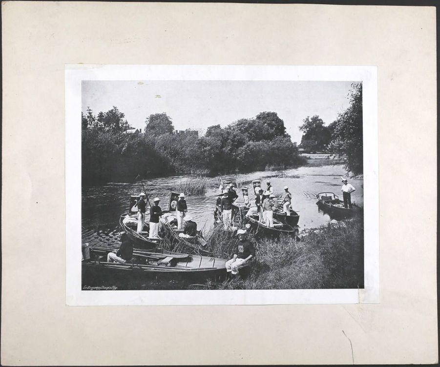 Le recensement annuel des cygnes royaux, le «swan upping», au début du XXe siècle.