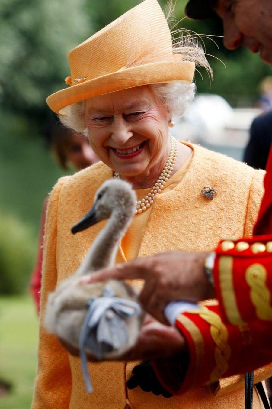 La reine Elizabeth II en 2009, lors de l'unique présence de son règne au recensement annuel des cygnes royaux, le «swan upping».