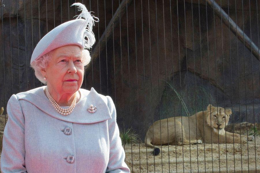 La reine Elizabeth II au zoo de Londres, le 17 mars 2016