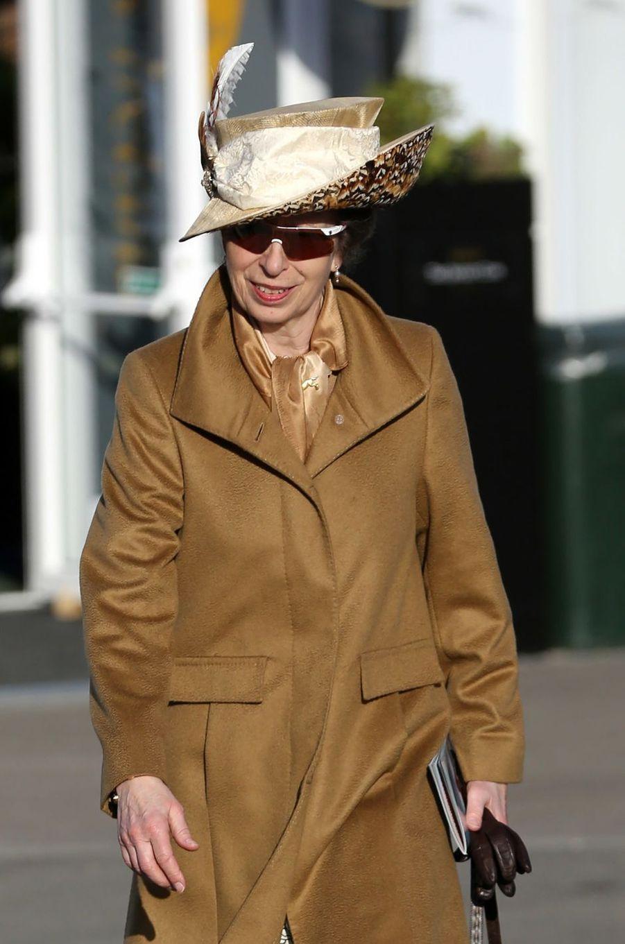 La princesse Anne au Cheltenham Festival, le 15 mars 2017