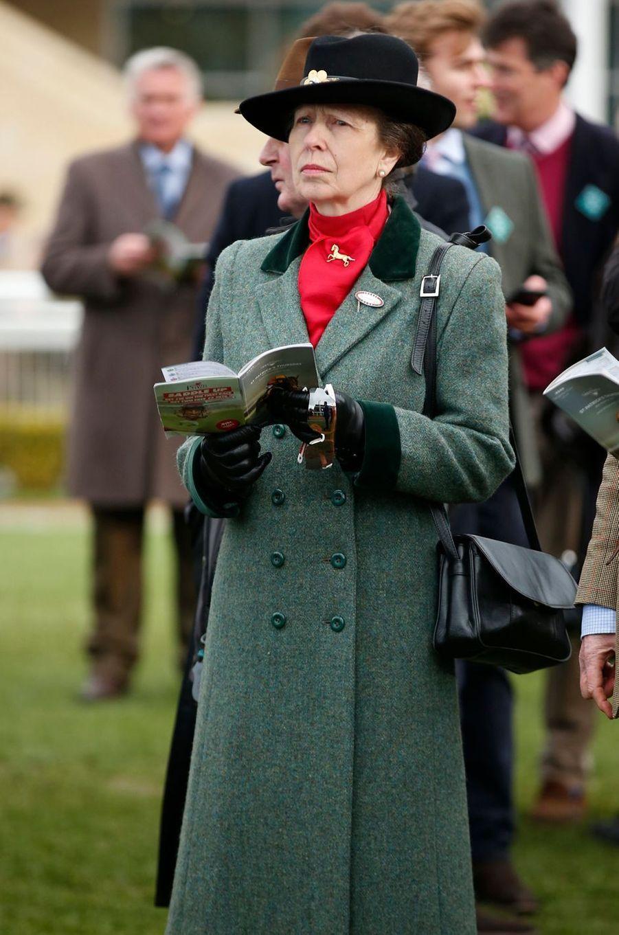 La princesse Anne au Cheltenham Festival, le 16 mars 2017