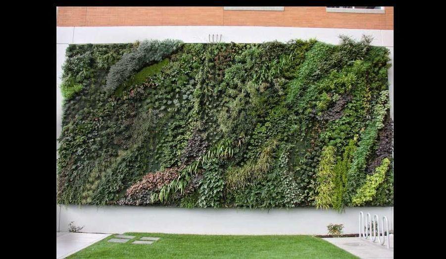 «Je déteste les jardins, l'homme y est trop interventionniste.» Botaniste et chercheur au CNRS, Patrick Blanc est donc l'inventeur du jardin vertical, car «on ne se balade pas sur des murs, la nature reprend ses droits». «Le brevet consiste en quelques agrafes sur une serpillière avec des plantes dedans», décrit-il modestement. Cette création inédite dans le monde est popularisée en 2001 grâce à la designer Andrée Putman qui lui en demande 10 mètres pour l'hôtel Pershing Hall à Paris. Il récidive en 2005 pour l'architecte Jean Nouvel sur une façade du musée du Quai-Branly. Aujourd'hui, le système est copié aux quatre coins de la planète. Patrick Blanc s'en moque, c'est la rançon du succès. Fasciné depuis l'enfance par la faune et la flore exotique, il sillonne la planète en chemise camouflage (fleurs, feuilles…) et cheveux vert lagon à la recherche d'émotions rares et de nouveaux spécimens. En 2011, un bégonia qu'il a découvert aux Philippines a été officiellement baptisé «Begonia blancii». Il teste en parallèle des expériences de plus en plus innovantes. A Barheïn, 55°C l'été, il alimente ses plantes avec l'eau des climatiseurs; à Bali, il enveloppe un resort entier; à Sydney, il teste, encore avec Jean Nouvel, les effets graphiques de carrés de verdure sur un gratte-ciel babylonien. Rien ne l'arrête. «J'ai la chance d'avoir en ville des millions de mètres carrés inutilisés qui peuvent nous faire du bien!» En septembre, il inaugurera le plus grand mur végétal du monde: 2000 mètres carrés au centre commercial de l'Alpha Park aux Clayes-sous-Bois.Son conseil: «Considérez chaque plante comme une invitée à part entière et renseignez-vous sur ses goûts: soleil, eau, affinités électives. C'est la moindre des courtoisie!»