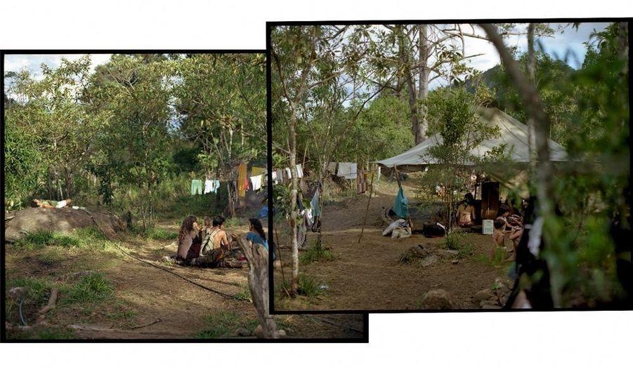 A part les tribus autochtones, les seuls habitants du secteur sont d'anciens hippies reconvertis dans la cueillette d'herbes médicinales.
