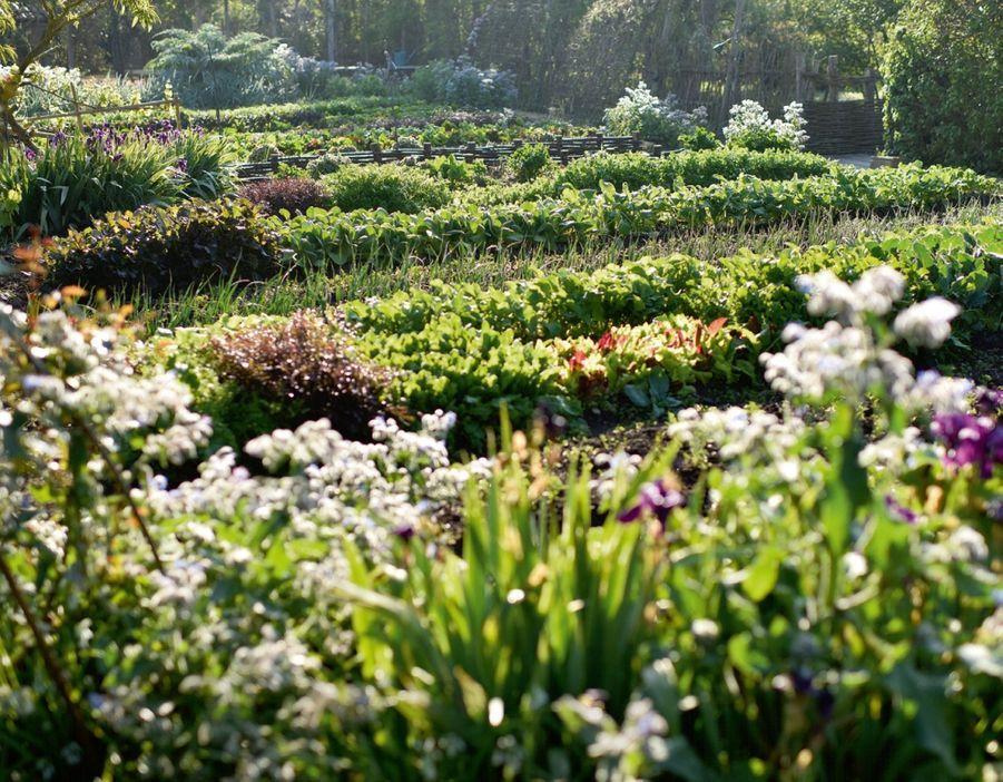 160 variétés de fruits, de légumes et d'aromates poussent sans pesticides dans cet éden.