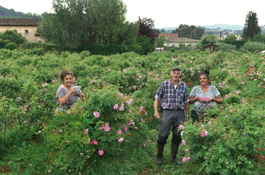Jean-Paul Joubert, cultivateur depuis quatre générations, entouré des sœurs Lafleur, deux de ses cueilleuses.